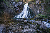 In spring at the Gollinger waterfall, Golling, Salzburg, Austria
