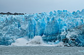 During the calving process, large chunks of ice fall off the glacier wall and splash into the water, Pio XI Glacier, Magallanes y de la Antartica Chilena, Patagonia, Chile, South America