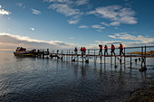 Passengers on a day trip to Isla Magdalena cross a long pier to board the ship, near Punta Arenas, Magallanes y de la Antartica Chilena, Patagonia, Chile, South America