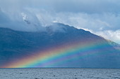 A bright rainbow forms in front of a mountain surrounded by low clouds, near Kirke Narrows, Magallanes y de la Antartica Chilena, Patagonia, Chile, South America