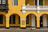 A dog sneaks past a stunning colonial palace in the central square (Plaza Mejor) in downtown, from Lima, Lima, Peru, South America