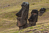 Two moais stand and one lies half buried on grassy slopes; The statues date from between 1250 and 1500, Rapa Nui, Easter Island, Chile