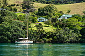 A sailboat lies at anchor in front of a lovely, rural scene with trees, bushes, houses and fields, Great Barrier Island, North Island, New Zealand
