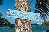 Zweisprachiges Schild am Stamm einer Palme warnt die Besucher vor herabfallenden Kokosnüssen, im Hintergrund das Meer und ein Expeditionskreuzfahrtschiff, Mamanuca Islands, Fiji-Inseln, Südpazifik