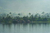 A veil of smoke from a volcano hangs over palm trees along the water's edge, Rabaul, East New Britain Province, Papua New Guinea, South Pacific