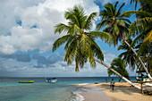 Palm trees line a narrow, sunny beach with boats and two people, San Blas Islands, Panama, Caribbean
