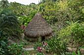Mit Palmwedeln überdachte Hütte inmitten von üppigem Grün, Santa Marta, Magdalena, Kolumbien, Karibik