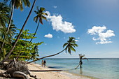 Seen from behind, two people run along a white sandy beach lined with palm trees, Pigeon Point, Tobago, Trinidad and Tobago, Caribbean