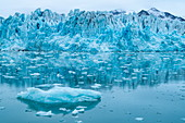 A rugged glacier front is reflected in the calm water surface, which is littered with mostly small pieces of ice, Lilliehöökfjord, Albert-I-Land, Spitsbergen, Norway, Europe