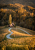 Herzerl Straße in autumn directly on the border between Styria and Slovenia