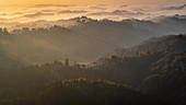 Golden morning from the observation tower at Platschberg on the hilly Slovenian landscape of Kungota, Slovenia