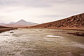 "High plateau ""Altiplano"", Atacama desert, Antofagasta region, Chile, South America"