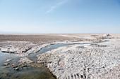 dry brine at Laguna Chaxa, Salar de Atacama Desert, Antofagasta Region, Chile, South America