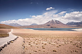 "Laguna Miscanti and Miñiques, ""Altiplano"" plateau, Atacama desert, Antofagasta region, Chile, South America"