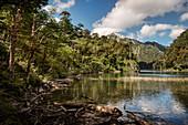 Toto Lake (Lago Toro), Parque Nacional Huerquehue, Pucon, Región de la Araucanía, Chile, South America