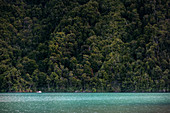 small boat drives in the Rio Petrohue, Region de los Lagos, Chile, South America