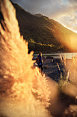Wanderin enjoys sunset at Rio Petrohue, Region de los Lagos, Chile, South America