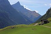 Unicorn and Splügen, Via Spluga, Graubünden