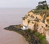 France, Charente Maritime, Meschers sur Gironde, plaice fishery, Cave matata