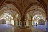 France, Herault, Villeveyrac, the Valmagne abbey, the cloister