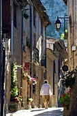 France, Herault, the Causses and the Cevennes, Mediterranean agro pastoral cultural landscape, listed as World Heritage by UNESCO, Saint Guilhem le Desert, labelled Les Plus Beaux Villages de France (The Most Beautiful Villages of France)