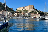 France, Corse du Sud, Bonifacio, the port overlooked by the Citadel in the upper town