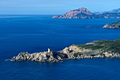 France, Corse du Sud, Cargese, the Genoese tower of the point of Omigna and the Capo Rosso in the background (aerial view)
