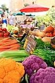 France, Corse du Sud, Porto Vecchio, Sunday Market, The Garden of Fozzano, maraicher organic vegetables