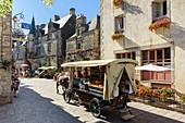 France, Morbihan, Rochefort en Terre, labelled Les Plus Beaux Villages de France (The Most Beautiful Villages of France), cariole horse in castle street