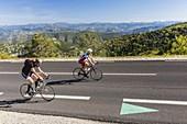 France, Vaucluse, Aurel, Beaumont-du-Ventoux, Bedoin, Brantes, Flassan, Malaucene, Monieux, Saint-Leger-du-Ventoux, Sault, Savoillan, Villes-sur-Auzon, ascent by bicycle near of the summit of Mont Ventoux (1912m) with a view of the Alps