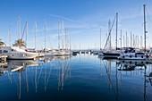France, Var, Iles d'Hyeres, national park of Port-Cros, Island of Porquerolles, yacht in the port