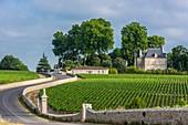 Frankreich, Gironde, Saint-Lambert, Weinberg Medoc, Chateau Pichon Longueville Comtesse de Lalande, AOC Pauillac