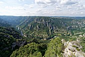 France, Lozere, the Causses and the Cevennes, Mediterranean agro pastoral cultural landscape, listed as World Heritage by UNESCO, the Gorges du Tarn, the St Chely circus