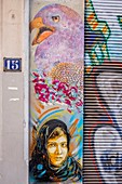 France, Isere, Grenoble, Grenoble Street Art Fest, dozens of artists express themselves in the streets of the city, Malala Yousafzai portrait (Pakistani activist for female education and the youngest-ever Nobel Prize laureate), work of C215, Genissieu street