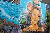 France, Isere, Grenoble, Grenoble Street Art Fest, dozens of artists express themselves in the streets of the city, work of Srek, Will et Greg