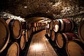 France, Rhone, Ampuis, Rhone valley, wine of Cote du Rhone, vineyards of Cote Rotie, cellars of the Guigal wine house