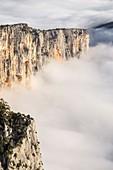 France, Alpes de Haute-Provence, regional natural reserve of Verdon, Grand Canyon of Verdon, cliffs of the Barres of Escalès, morning autumn fogs