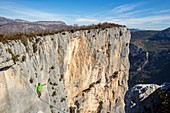 France, Alpes de Haute-Provence, regional natural reserve of Verdon, Grand Canyon of Verdon, a young man walks balance over the space on a highline of 25m in the circus of Sordidon there