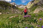 Randinascia, flowers and hikers, Trekking del Laghetti Alpini, Ticino, Switzerland