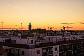 Cityscape with Giralda bell tower at sunset in Seville, Spain