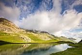 France, Alpes de Haute Provence, national park of Mercantour, Haute Hubaye,