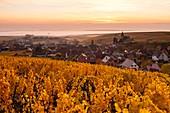 Frankreich, Haut-Rhin, Elsässer Weinstraße, Hunawihr mit der Bezeichnung 'Les Plus Beaux Villages de France' (schönste Dörfer Frankreichs), Kirche und Weinberg Saint- Hune