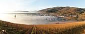 Frankreich, Haut-Rhin, Elsässer Weinstraße, Riquewihr mit der Bezeichnung 'Les Plus Beaux Villages de France' (schönste Dörfer Frankreichs), Kirche und Weinberg Saint- Hune