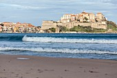 France, Haute Corse, Balagne, Calvi and his Genoese citadel seen since the beach of the bay of Calvi
