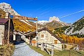 France, Hautes-Alpes, Nevache, Vallee Etroite in fall, Les Granges hamlet, Grand Seru (alt : 2889 m) and Mount Thabor (alt : 3178 m) in the background