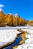 France, Hautes Alpes, Brianconnais in fall, Claree valley, Cerces massif