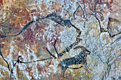France, Ariege, listed at Great Tourist Sites in Midi Pyrenees, Regional Park Ariege Pyrenees, Niaux, Niaux cavern, Niaux cave paintings