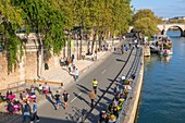 France, Paris, area listed as World heritage by UNESCO, the Rives de Seine park, new railway track development inaugurated on 02/04/2017