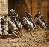 France, Gard, Aigues Mortes, Aigues Mortes festivity, orses and riders coming out of the walls at the abrivado