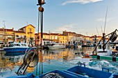 France, Gard, Le Grau du Roi, Site protected by the Conservatoire du Littoral, boats moored on the canal